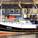 Ocean Triumph II KY156