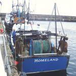 Homeland  BCK 225