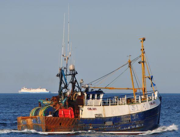 Ocean Trust  OB 381