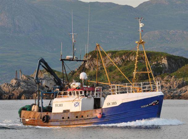 Ocean Hunter  SY 503