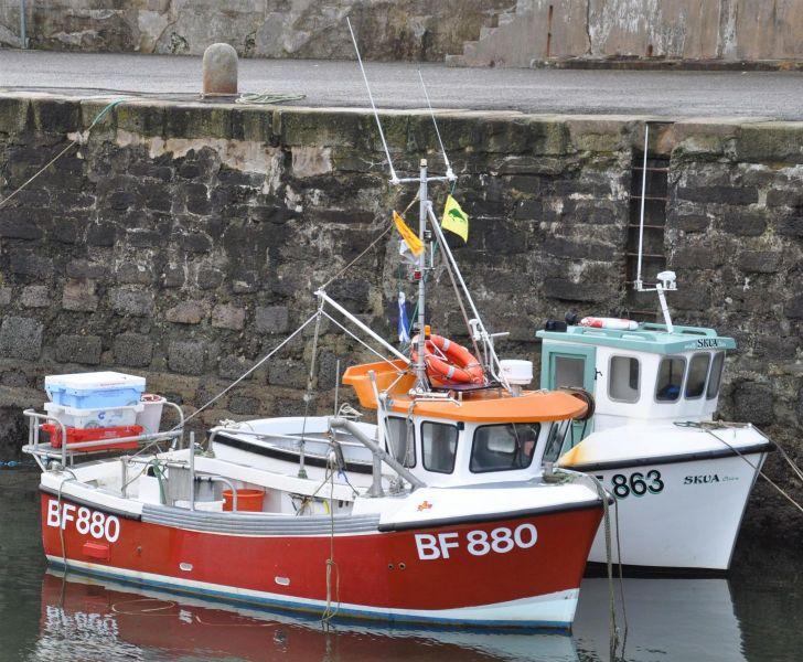 Lawret BF 880 and Skua BF 863