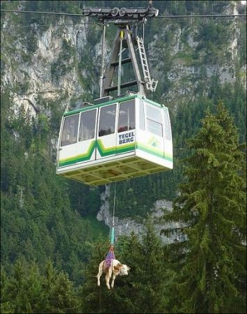 Rikki taking the Cable car