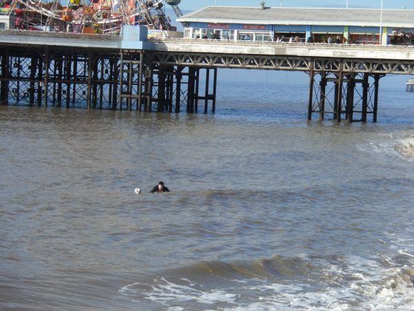 Spring Tides Di-K Head Lad
