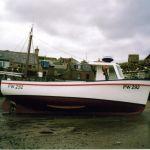 Marnik PW 292