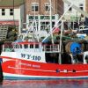 Whitby Rose  WY 110
