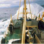 SILVERY SEA OB245