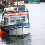 harbour pride W103