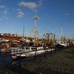 Royal Quays Marina - North Shields