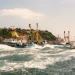 Brixham Trawler race