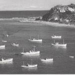ISLAND BAY FISHING FLEET 1960