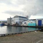 Fish factory's