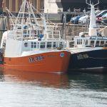 Shaligar - FR955 & Silver Sea - ML15