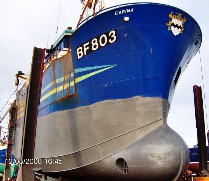 Carina  BF 803