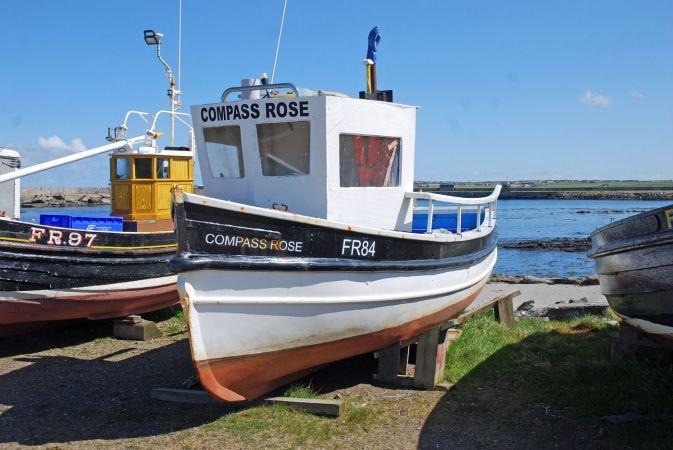 Compass Rose - FR84