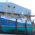 Pisces - BCK223