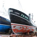 Lapwing - PD972 & Nova Spero - LH142