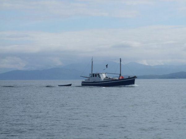 any idea what boat
