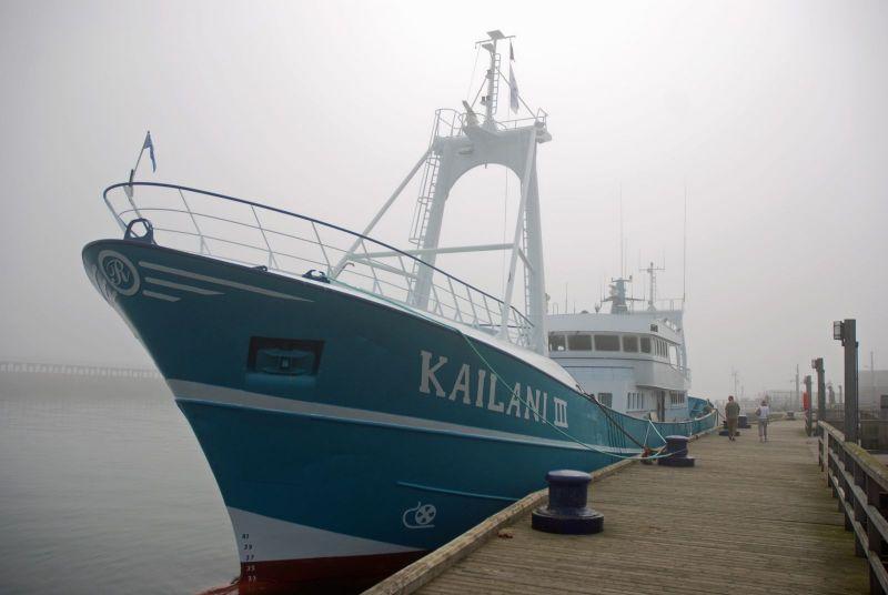 Kailani III