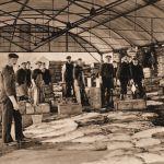 Blyth Fish Market