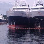 Hake Trawlers in Seattle