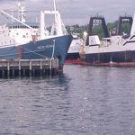 Pollock/Hake trawlers in Seattle