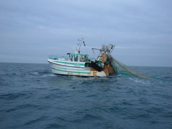 French Trawler CHARLEVY towing over wreck
