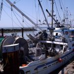 Semi-pelagic hake trawler