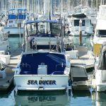 Sea Ducer