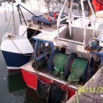 BLUE ARC OB 593AND SHARON ANN