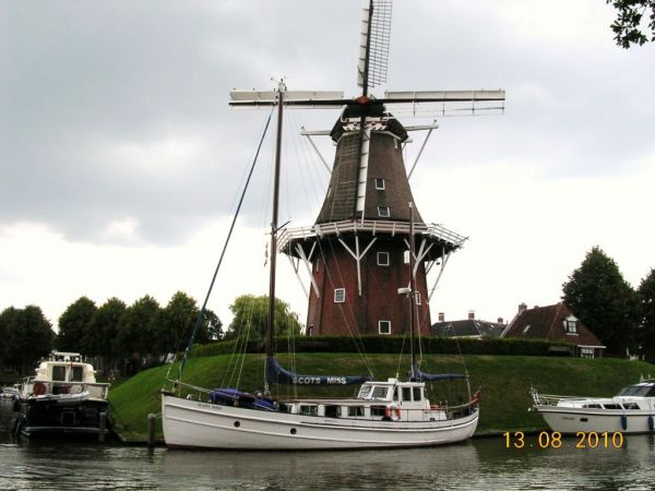Maireared (now Scots Miss) in Dockkam Holland