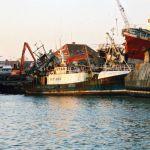 Ships Graveyard Waiting To Die