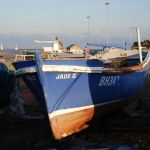Jade II - BH342