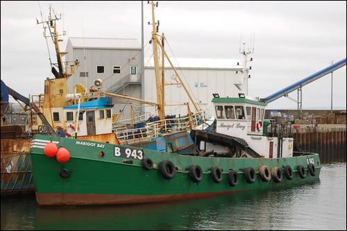 Marigoy Bay B-943