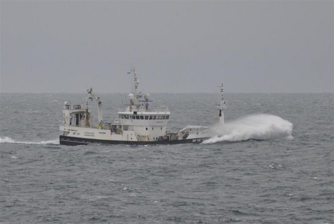 Krossfjord  BF 70