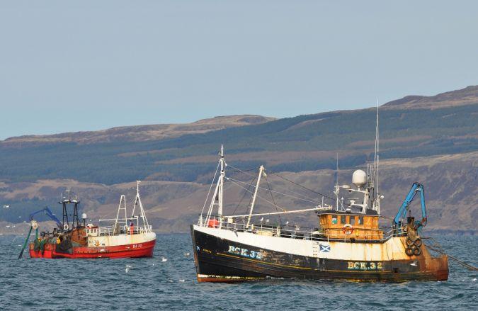 Aubretia  BCK 32 and Ocean Maid  BA 55
