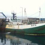 Ocean Soverign  BCK 15