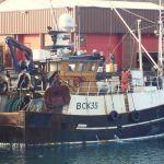 Caledonia 11  BCK 35