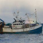 OCEAN REWARD BCK83