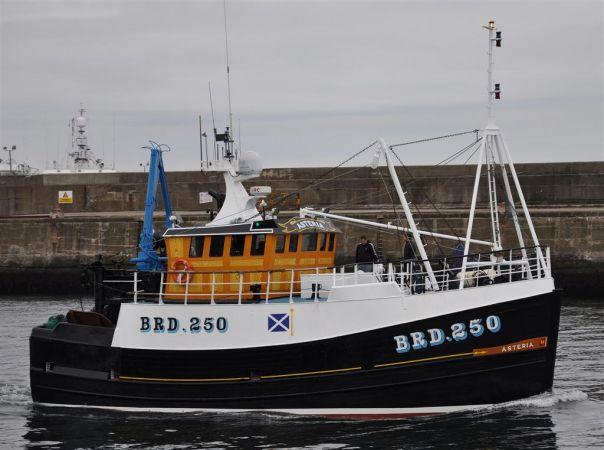 Asteria  BRD 250