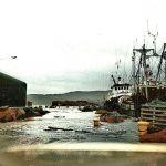 Inner harbour, 1992