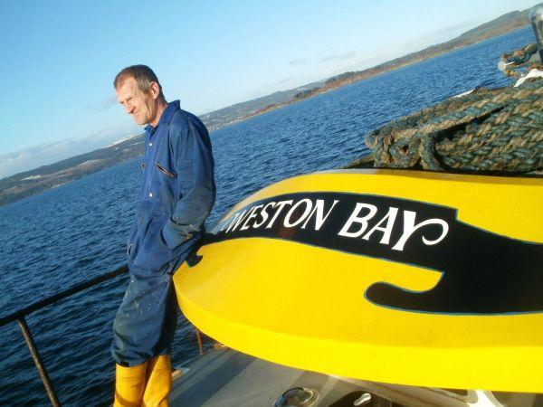 Tool - Weston Bay