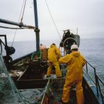 gillnets-brothers hope D247
