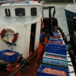 Ready to land West Loch Tarbert