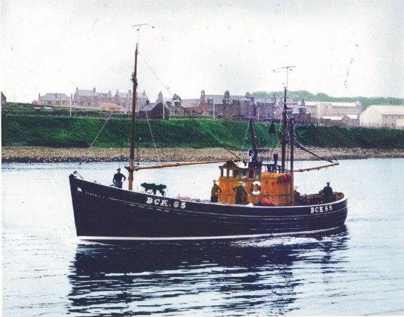 Lunaria  BCK 65