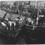 Dunbar early 50s