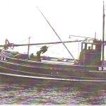 Seaflower BRD 411