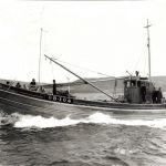 Crystal Sea       OB 104
