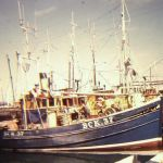 Scotia  BCK 37