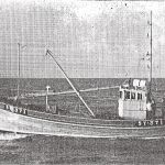 Ribhinn Donn SY 371