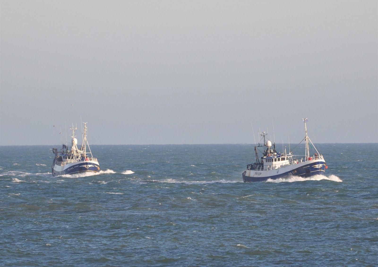 Phoenix  FR 941 and Falcon FR 119